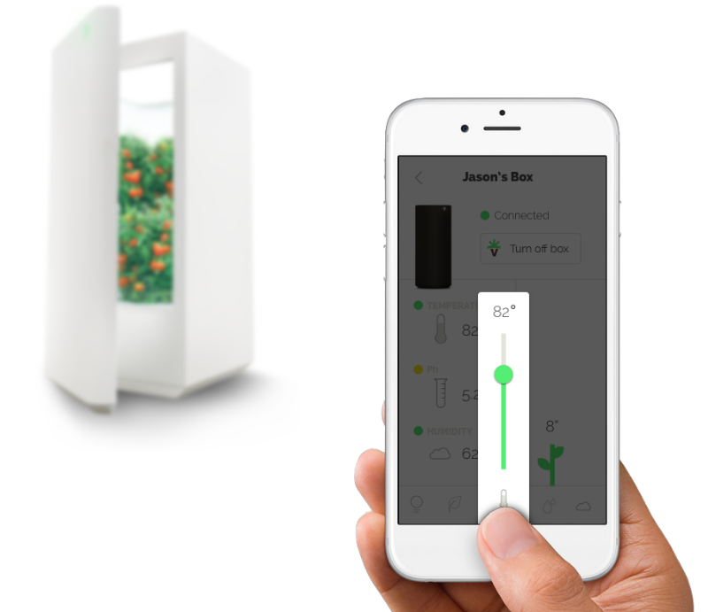 Smart Luxury: The Best Technology for a Sustainable Home