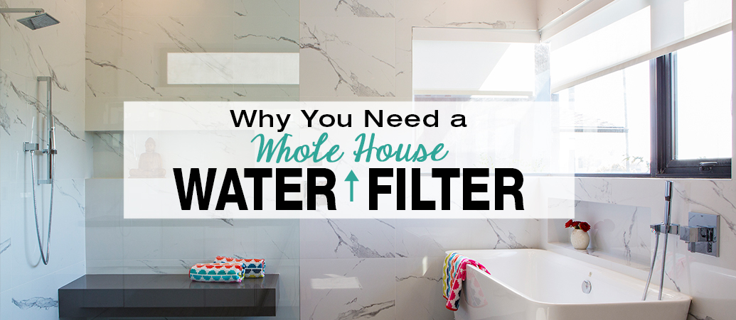 Why You Need a Whole House Water Filter