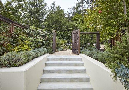 Edible Garden Landscape Design