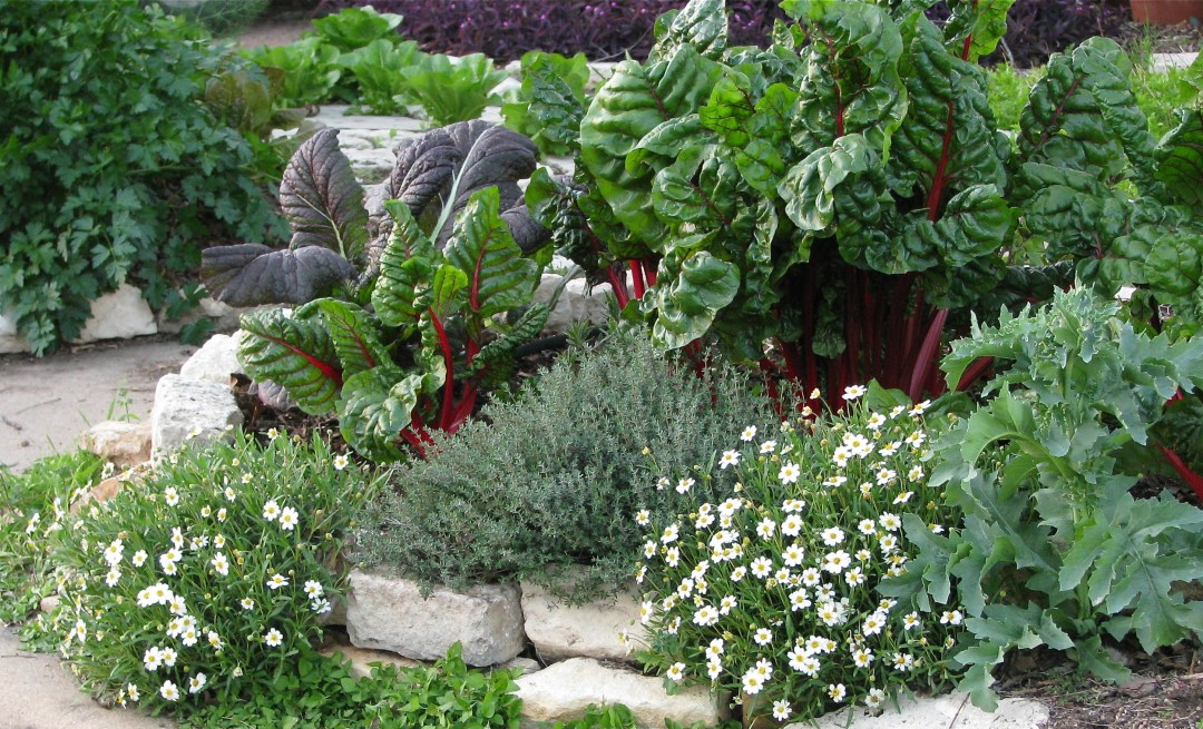 How to Design a Beautiful Vegetable Garden