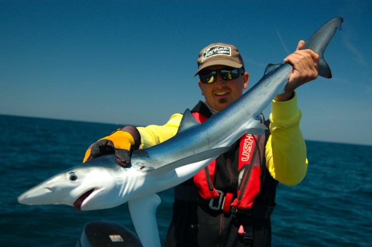 pêche au requin 2017 4