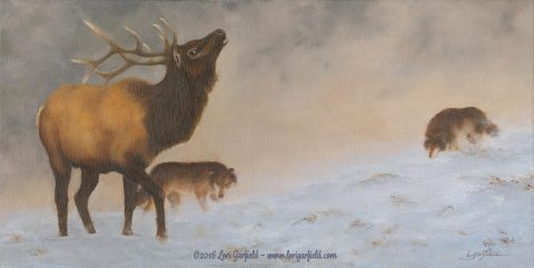 "Paintings by Lori Garfield : Ridge Hunters, 24"" x 12"" Original Oil Painting of an elk in snow being stalked by two wolves by artist Lori Garfield, Medford Oregon"