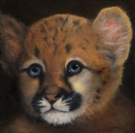 Paintings by Lori Garfield : Cougar Kitten, Original Oil Painting by artist Lori Garfield, Medford Oregon
