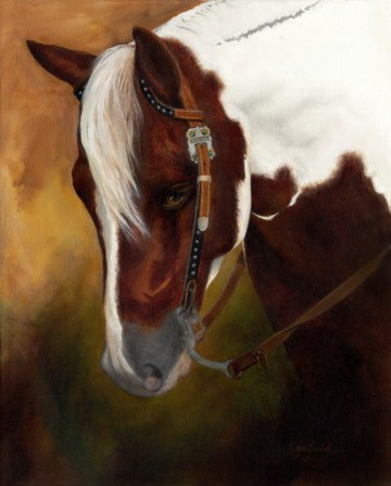 Paintings by Lori Garfield : Cooper, portrait of a pinto horse with Western bridle. Original Oil Painting by artist Lori Garfield, Medford Oregon