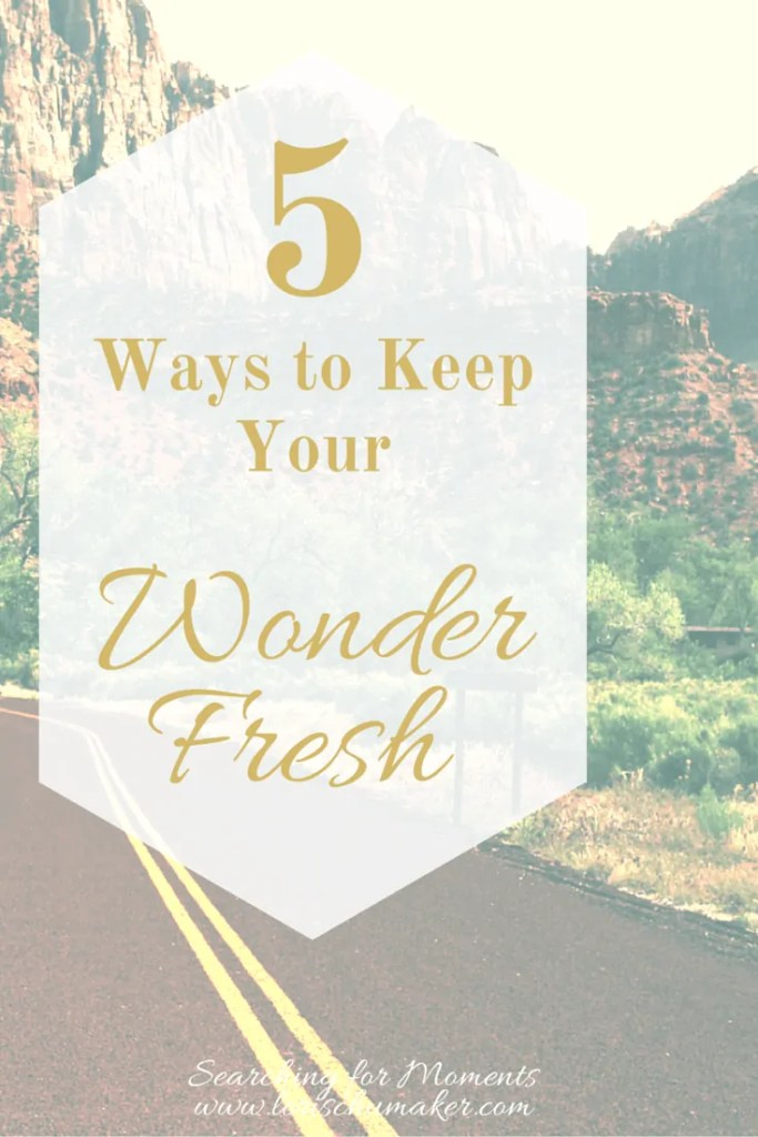 Have you stopped seeing the beauty and wonder in your everyday? Have you lost your joy? 5 Ways to Keep Your Wonder Fresh