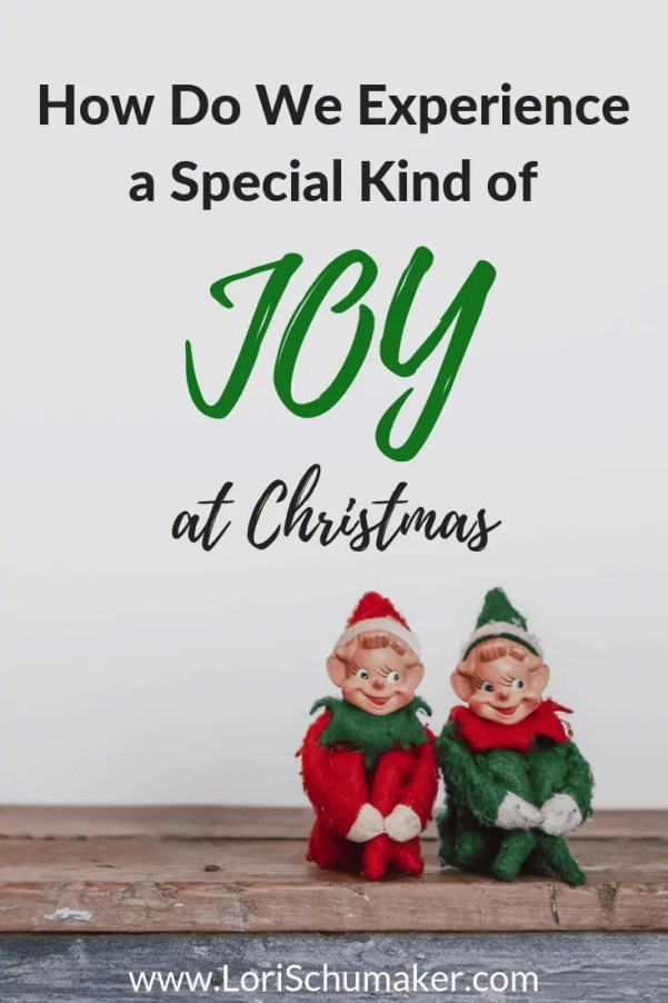 But how do we do it? How do we experience a special kind of Christmas joy and not get lost in the hustle and bustle of the season? #joy #experiencejoy #christmas