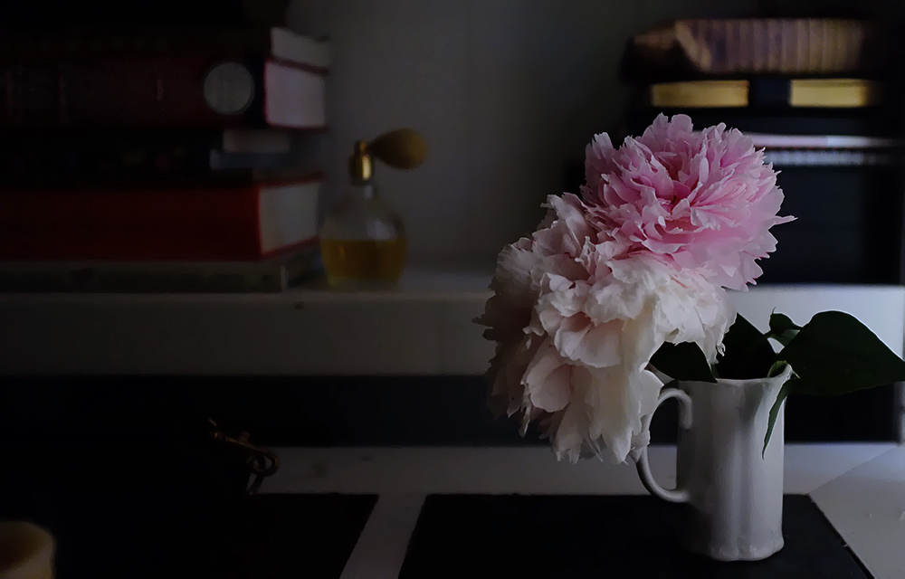 peonies, bookshelf and shadows
