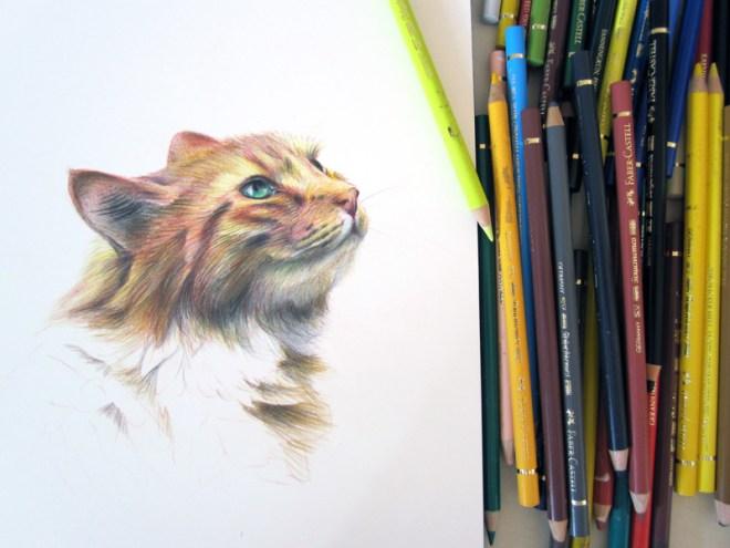 chat-crayon-en-cours1