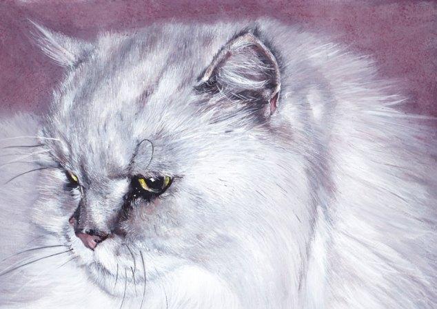 chat persan gouache pas a pas