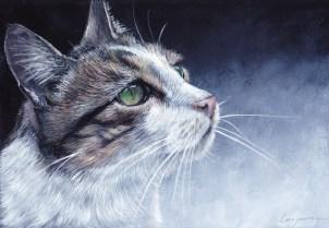 chat de gouttière à la gouache