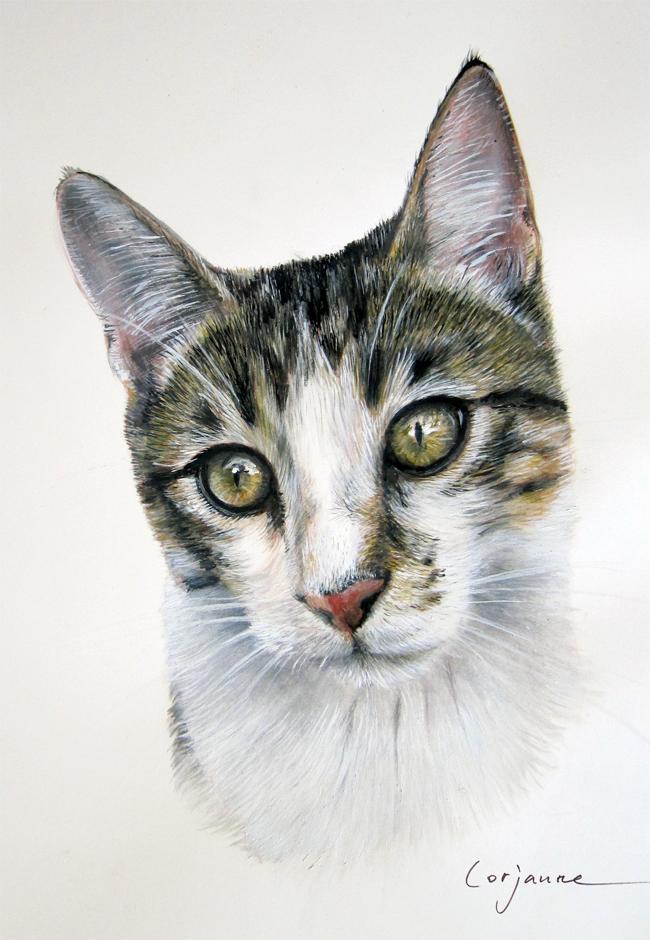 portrait-bouchon1