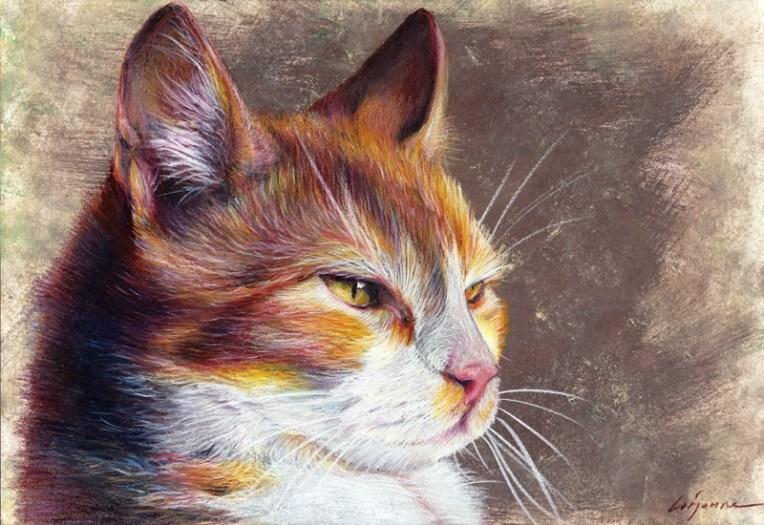 chat - crayon de couleur