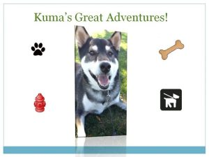 Kuma's Great Adventures