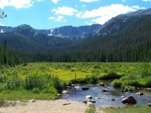 Kuma goes backpacking in Colorado