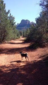 Take two for hiking Mescal Canyon