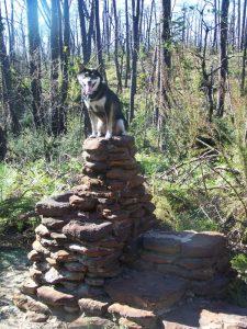 King Kuma enjoys hill country