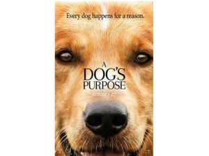 Movie & Book Review: A Dog's Purpose