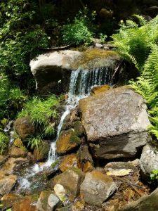 Christopher Creek Falls