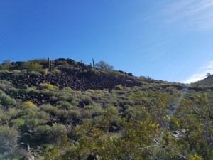 Green at Deem Hills