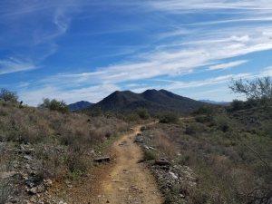 Kuma hikes Cave Creek Regional Park