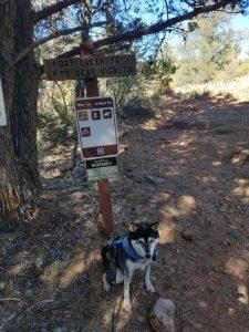 Kuma at trail head