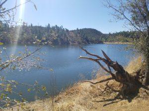 Lynx Lake in Prescott