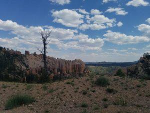Kuma visits Bryce Canyon