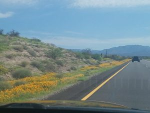 Driving to Payson