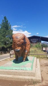 Kuma re-visits Buffalo Park