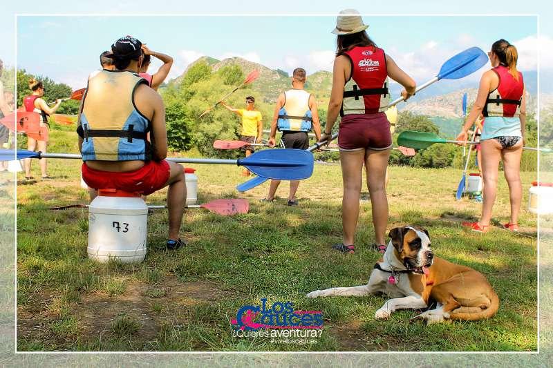 Los perros van al Descenso del Sella | loscauces.com
