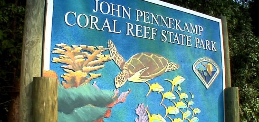 John Pennekamp Coral Reek State Park