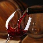 Go Wine, scoprire il vino e suoi paesaggi
