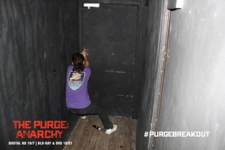 1412377324-Purge