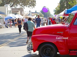 Los Olivos Day in the Country by Liz Dodder