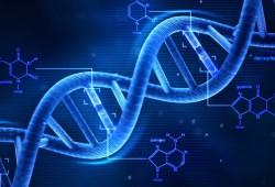 que es el genoma humano