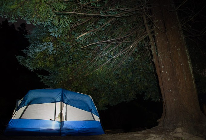 Tent Under Tree at Night at Van Damme State Park CA | LOST NOT FOUND | Mendocino CA Camping Weekend