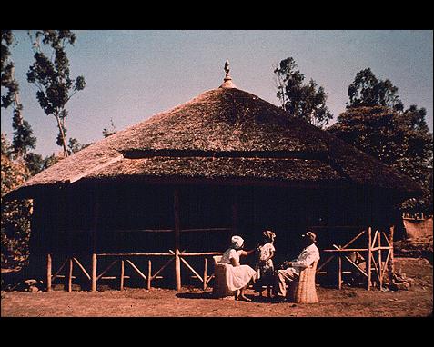 086 - House (Africa), UN