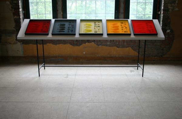 Ana Torfs - Stain - Installatie, 20 ingelijkste inktjet prints met ganzenveren en gekleurd acrylglas en speakers