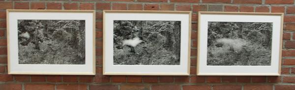 Soffi (Ademtochten) - Zwart-wit foto's