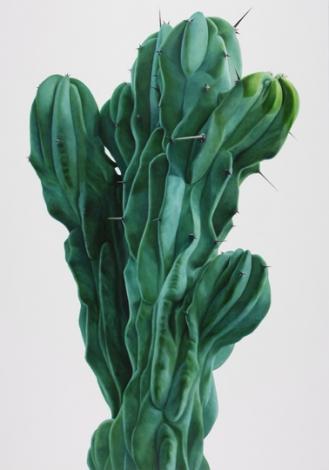 Cactus no.30 - 285x182cm Olieverf op canvas