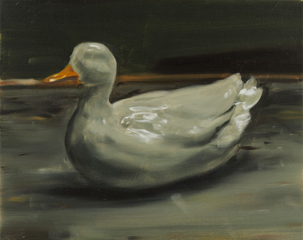 The Duck - 40x50cm Olieverf op canvas