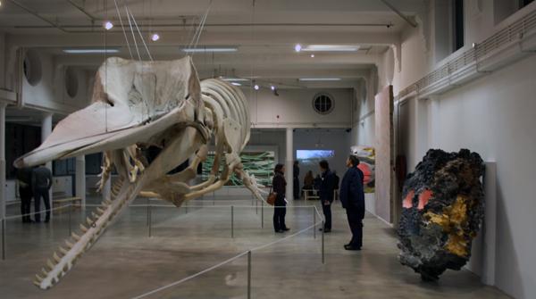 Natuurmuseum Reinoud van Vught en Huub van der Loo
