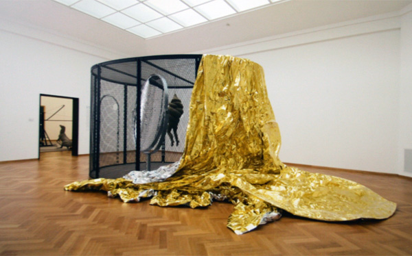 Louise Bourgeois - Cell XXVI