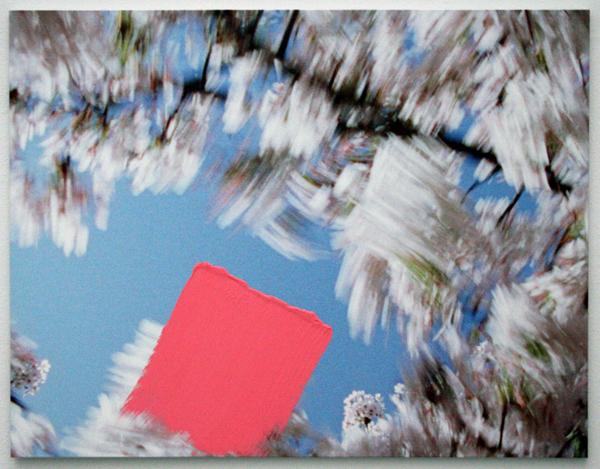 Marijke van Warmerdam - Blossom - Sweep - Acrylverf en inkjet print op doek