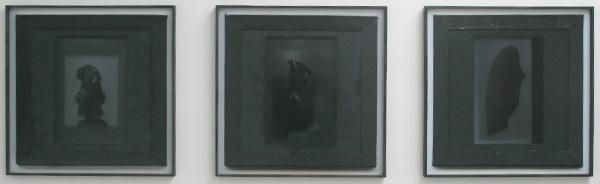 Rob Johannesma - Bole and bark - Print