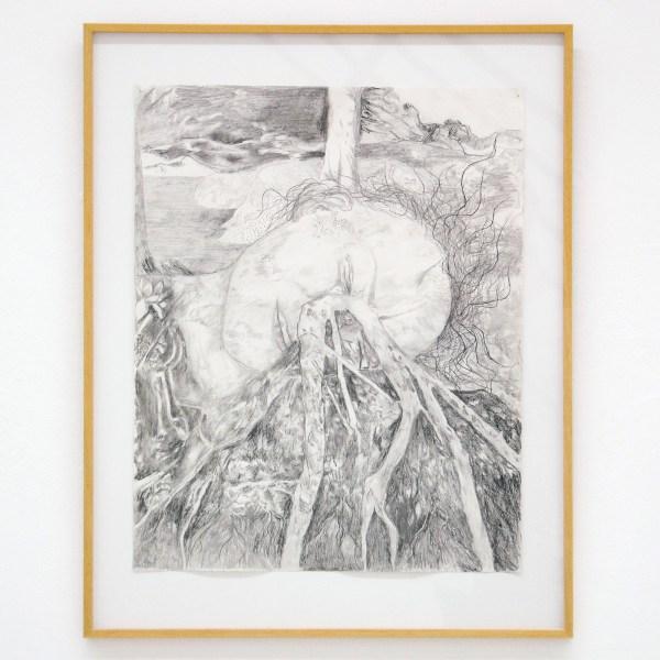 Gam Bodenhousen - Magnets, Roots, Grey Owl - 44x55cm Potlood op papier