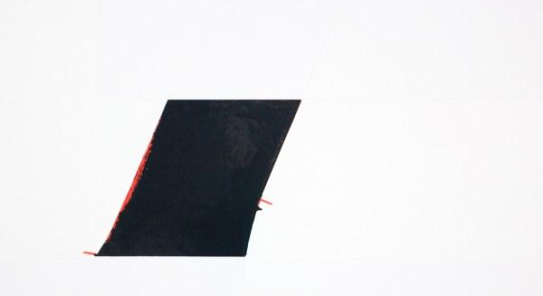 Ronald de Bloeme - Fact I (Times) - 230x200cm Mat- en hoogglanslak op katoen (detail)