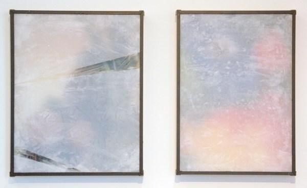 Lennart Lahuis - Parrot - 50x35cm & Still Life with Encyclopedia Americana - 50x40cm Inkjetprint op hout, bijenwas, papier en glas