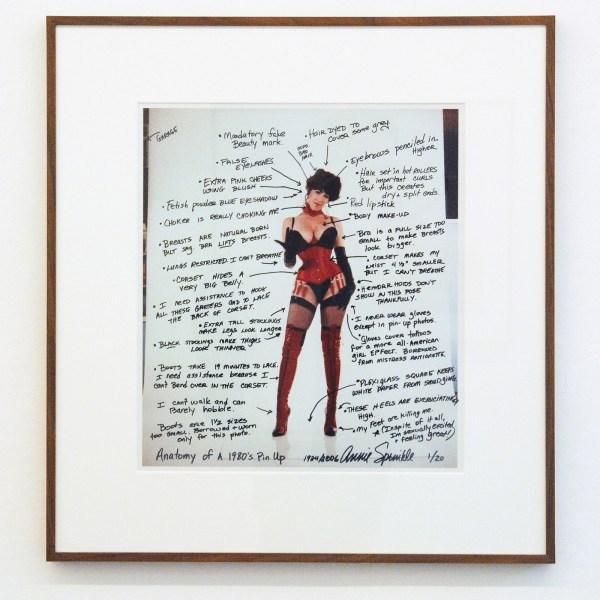 Annie Sprinkle - Anatomy of a Pinkup - C-print