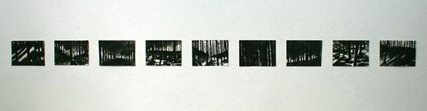 Carlijn Mens - Fragmenten van een landschap zonder angst - 12x21cm Houtskool op papier